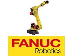Fanuc spuitrobot